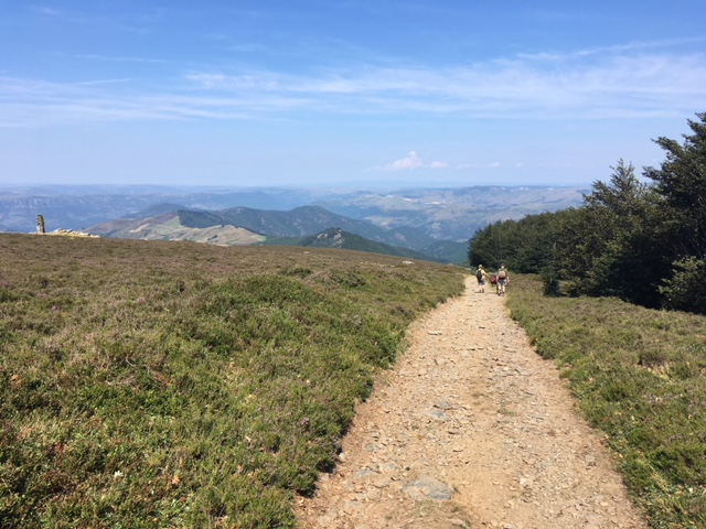 3 Men and a Donkey – Notes on hiking Le Stevenson in the Cevennes